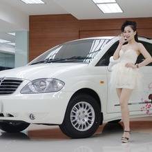 SsangYong-Stavic