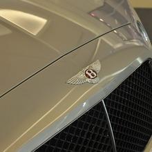 The-world-of-Bentley(91)