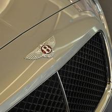 The-world-of-Bentley(92)